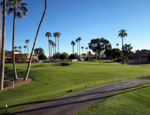 Sun Lakes Palo Verde Short Game Area